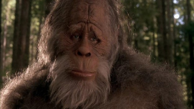 Does Bigfoot Really Exist?